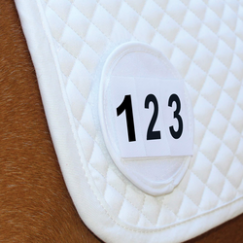 Saddle Cloth Number Holders - White Pair