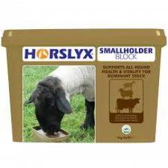 Horslyx Small Holder Block 5kg