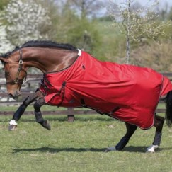 JHL Lightweight Turnout Rug 600 Denier no filling