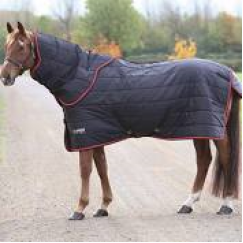Shires highlander 100g Stable Rug & Neck Set 9367 Promotional Price whilst stocks last
