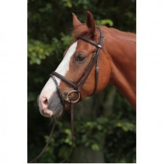 Stübben Leitrim 2300 Bridle and Slimline Flexi Rubber Reins