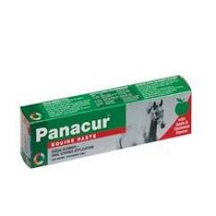 Panacur Equine Wormer Paste